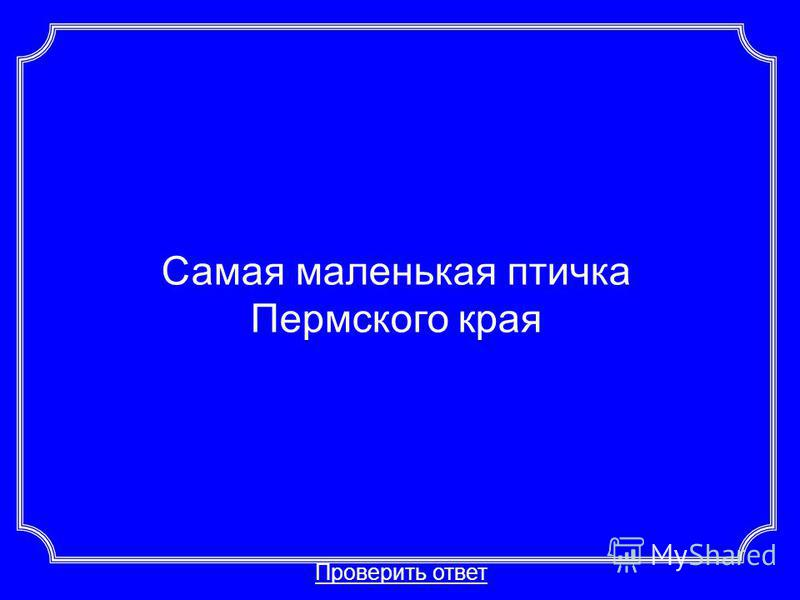 Самая маленькая птичка Пермского края Проверить ответ Категория 3-40