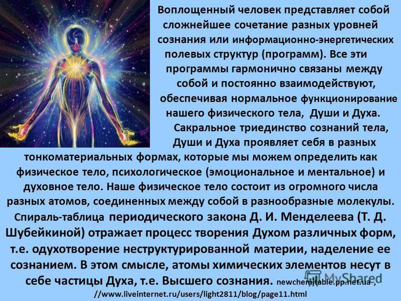 Воплощенный человек представляет собой сложнейшее сочетание разных уровней сознания или информационно-энергетических полевых структур (программ). Все эти программы гармонично связаны между собой и постоянно взаимодействуют, обеспечивая нормальное фун