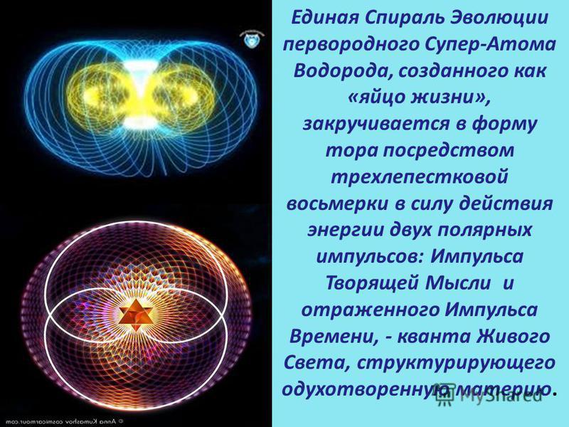 Единая Спираль Эволюции первородного Супер-Атома Водорода, созданного как «яйцо жизни», закручивается в форму тора посредством трехлепестковой восьмерки в силу действия энергии двух полярных импульсов: Импульса Творящей Мысли и отраженного Импульса В