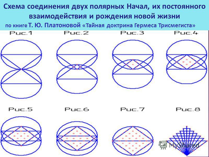 Схема соединения двух полярных Начал, их постоянного взаимодействия и рождения новой жизни по книге Т. Ю. Платоновой «Тайная доктрина Гермеса Трисмегиста»