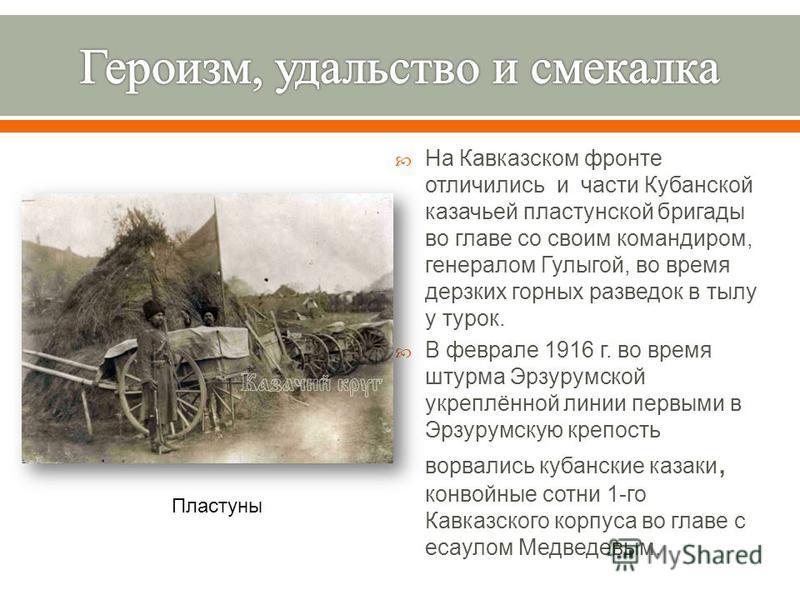 На Кавказском фронте отличились и части Кубанской казачьей пластунской бригады во главе со своим командиром, генералом Гулыгой, во время дерзких горных разведок в тылу у турок. В феврале 1916 г. во время штурма Эрзурумской укреплённой линии первыми в