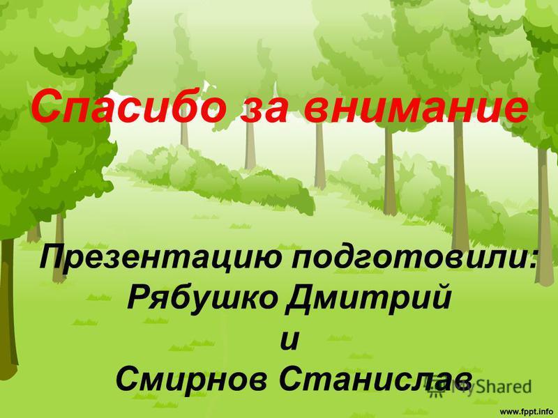 Спасибо за внимание Презентацию подготовили: Рябушко Дмитрий и Смирнов Станислав