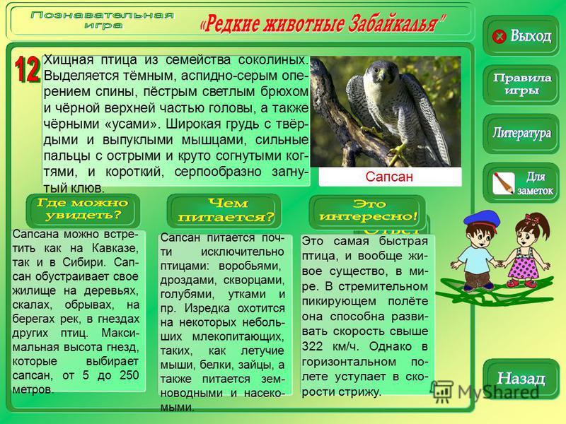 Сапсан Сапсана можно встре- тить как на Кавказе, так и в Сибири. Сап- сан обустраивает свое жилище на деревьях, скалах, обрывах, на берегах рек, в гнездах других птиц. Макси- мальная высота гнезд, которые выбирает сапсан, от 5 до 250 метров. Сапсан п