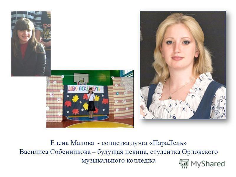 Елизавета Седых – обладатель Диплома II степени районного конкурса «Ученик года – 2013»