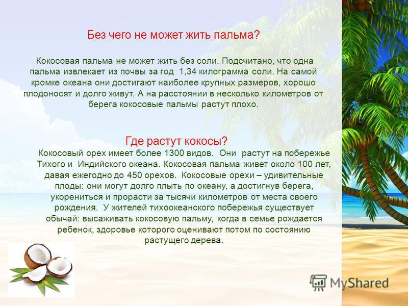 Без чего не может жить пальма? Кокосовая пальма не может жить без соли. Подсчитано, что одна пальма извлекает из почвы за год 1,34 килограмма соли. На самой кромке океана они достигают наиболее крупных размеров, хорошо плодоносят и долго живут. А на