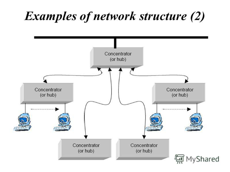 Examples of network structure (2)