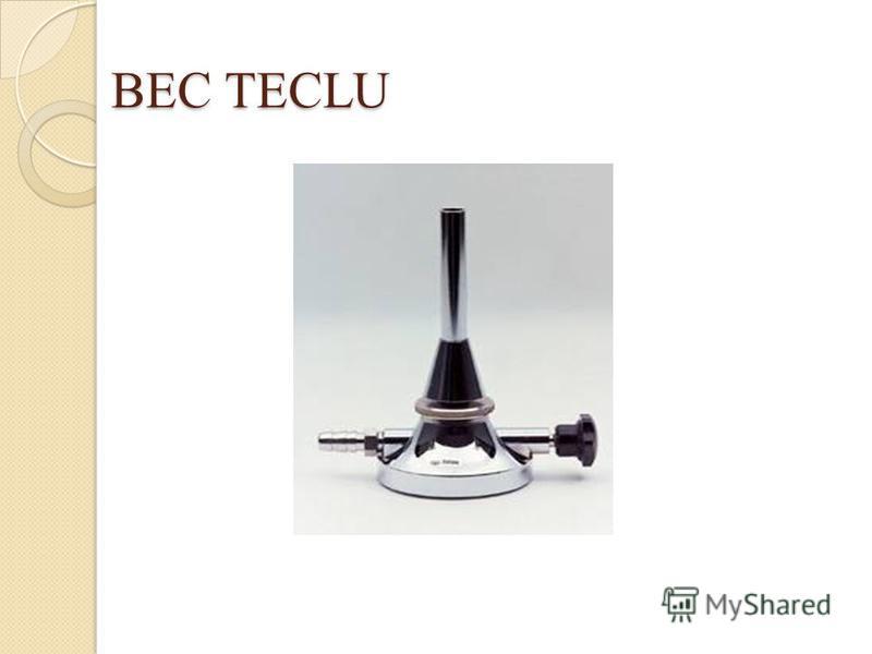 BEC TECLU