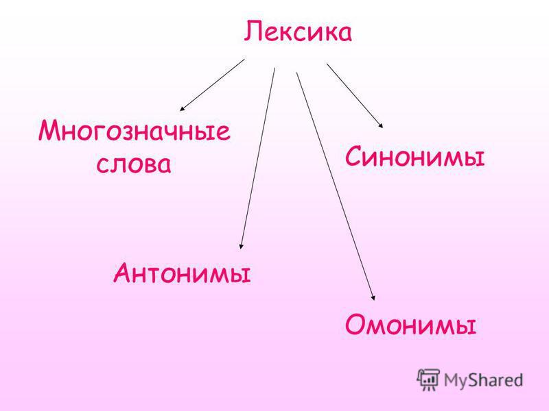 Лексика Многозначные слова Антонимы Синонимы Омонимы