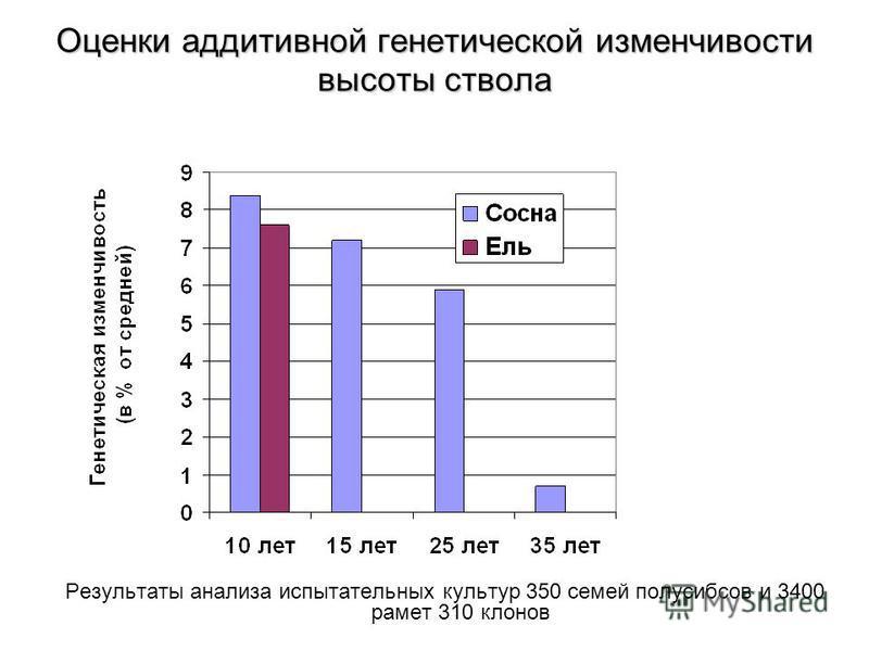 Оценки аддитивной генетической изменчивости высоты ствола Результаты анализа испытательных культур 350 семей полусибсов и 3400 ремет 310 клонов