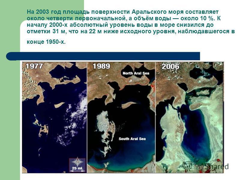 На 2003 год площадь поверхности Аральского моря составляет около четверти первоначальной, а объём воды около 10 %. К началу 2000-х абсолютный уровень воды в море снизился до отметки 31 м, что на 22 м ниже исходного уровня, наблюдавшегося в конце 1950