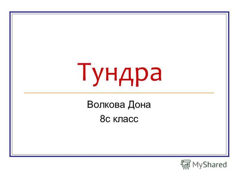 Тундра Волкова Дона 8 с класс