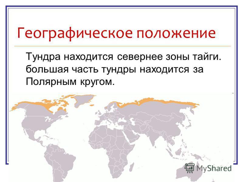 Географическое положение Тундра находится севернее зоны тайги. большая часть тундры находится за Полярным кругом.
