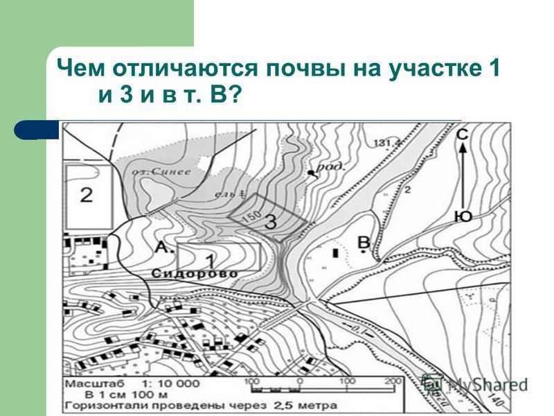 Чем отличаются почвы на участке 1 и 3 и в т. В?