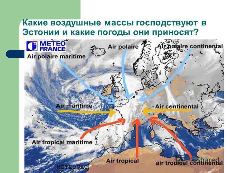 Какие воздушные массы господствуют в Эстонии и какие погоды они приносят?