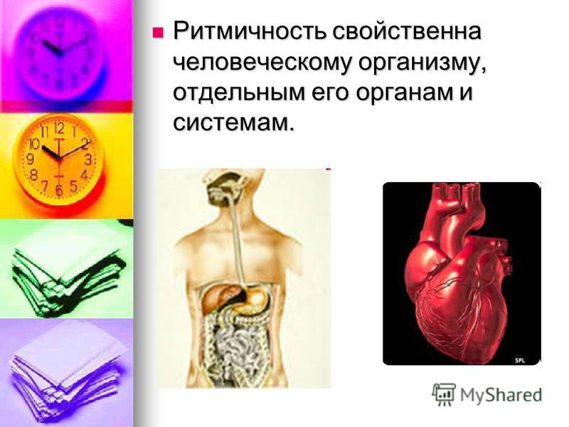 Ритмичность свойственна человеческому организму, отдельным его органам и системам. Ритмичность свойственна человеческому организму, отдельным его органам и системам.