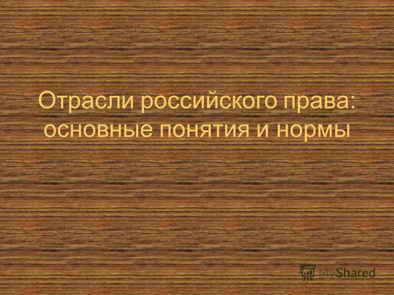 Отрасли российского права: основные понятия и нормы