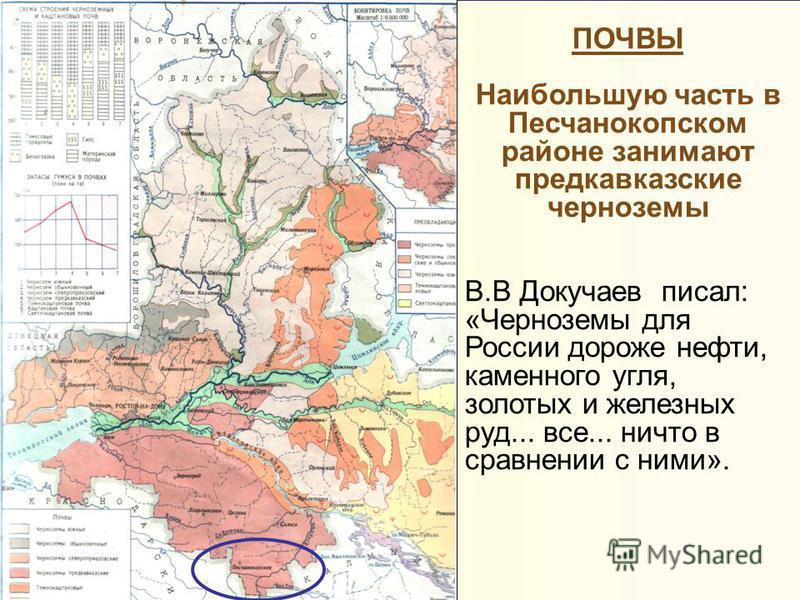 ПОЧВЫ Наибольшую часть в Песчанокопском районе занимают предкавказские черноземы В.В Докучаев писал: «Черноземы для России дороже нефти, каменного угля, золотых и железных руд... все... ничто в сравнении с ними».