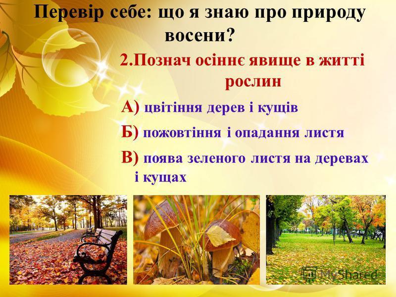 Перевір себе: що я знаю про природу восени? 2.Познач осіннє явище в житті рослин А) цвітіння дерев і кущів Б) пожовтіння і опадання листя В) поява зеленого листя на деревах і кущах