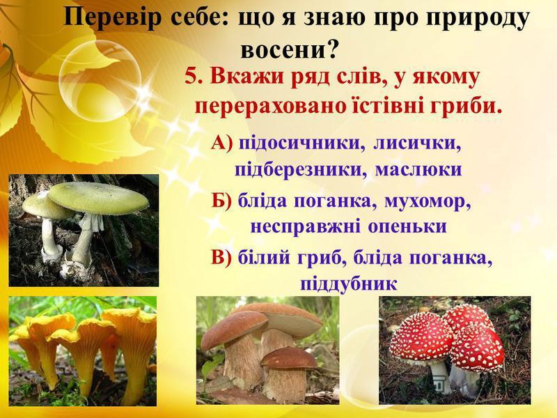 Перевір себе: що я знаю про природу восени? 5. Вкажи ряд слів, у якому перераховано їстівні гриби. А) підосичники, лисички, підберезники, маслюки Б) бліда поганка, мухомор, несправжні опеньки В) білий гриб, бліда поганка, піддубник