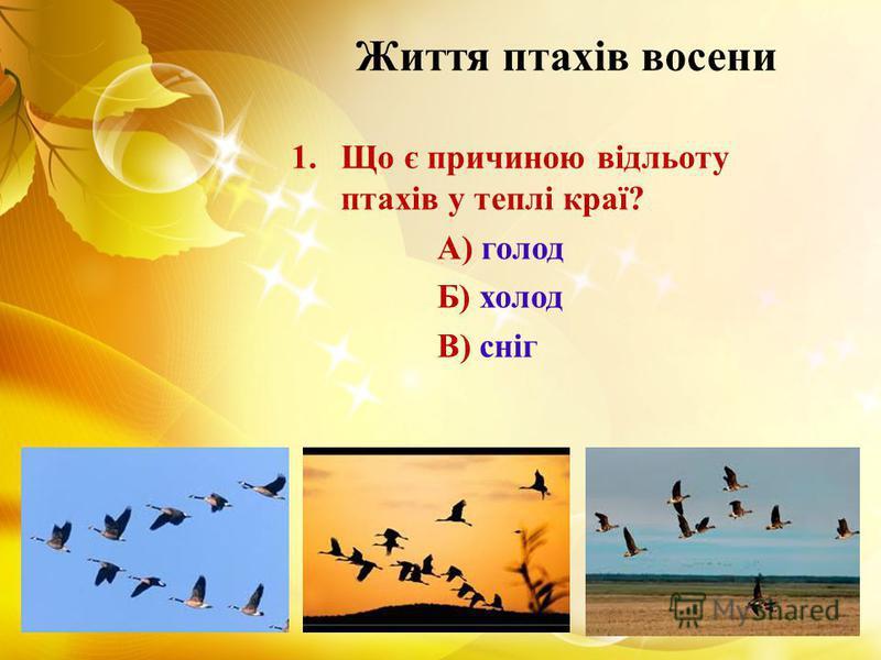 Життя птахів восени 1.Що є причиною відльоту птахів у теплі краї? А) голод Б) холод В) сніг