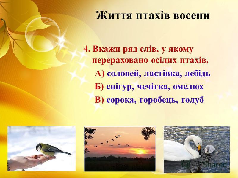 Життя птахів восени 4. Вкажи ряд слів, у якому перераховано осілих птахів. А) соловей, ластівка, лебідь Б) снігур, чечітка, омелюх В) сорока, горобець, голуб