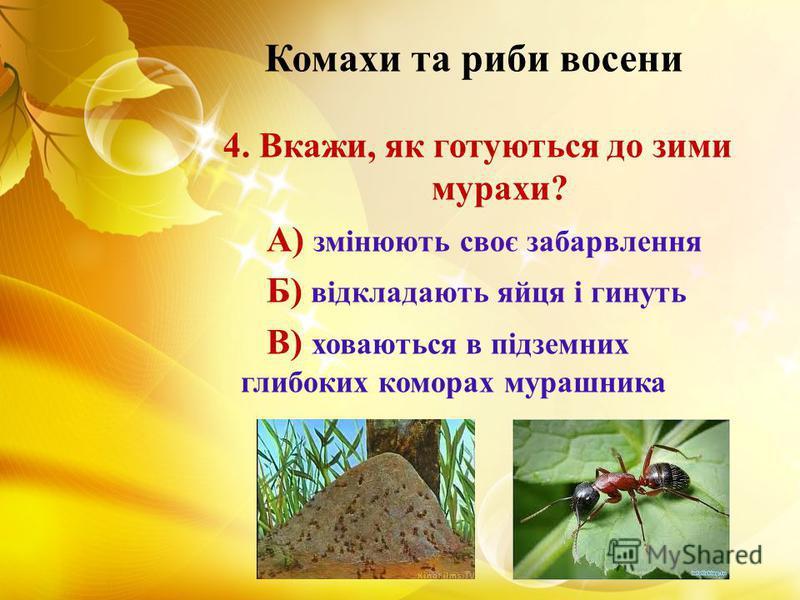 Комахи та риби восени 4. Вкажи, як готуються до зими мурахи? А) змінюють своє забарвлення Б) відкладають яйця і гинуть В) ховаються в підземних глибоких коморах мурашника
