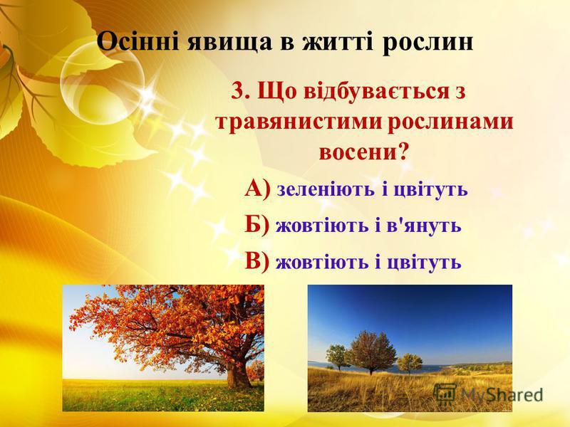 Осінні явища в житті рослин 3. Що відбувається з травянистими рослинами восени? А) зеленіють і цвітуть Б) жовтіють і в'януть В) жовтіють і цвітуть