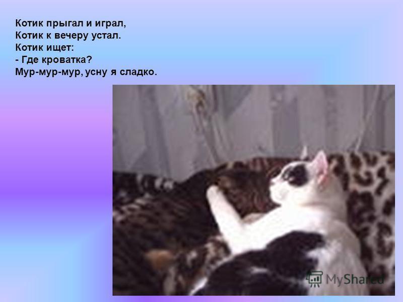 Котик прыгал и играл, Котик к вечеру устал. Котик ищет: - Где кроватка? Мур-мур-мур, усну я сладко.