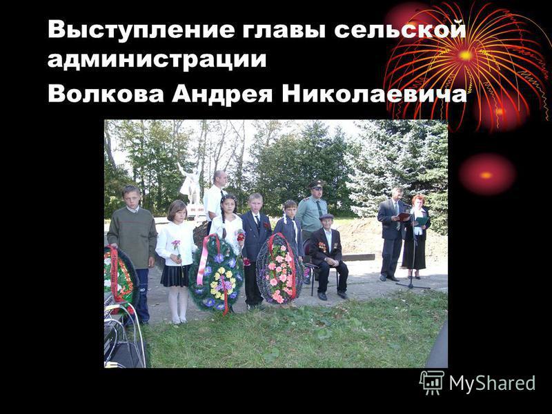 Выступление главы сельской администрации Волкова Андрея Николаевича