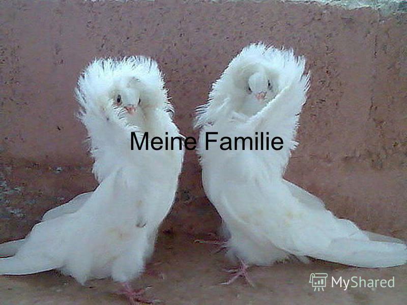 Meine Familie