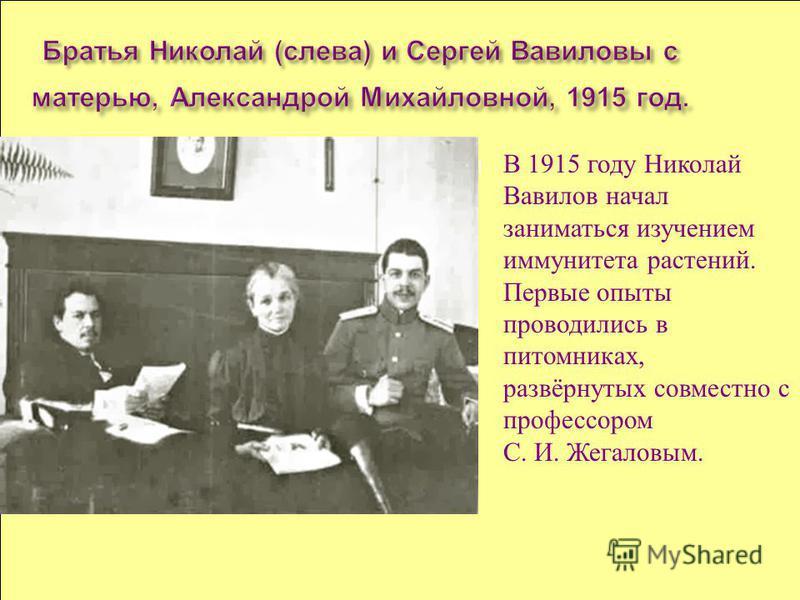 В 1915 году Николай Вавилов начал заниматься изучением иммунитета растений. Первые опыты проводились в питомниках, развёрнутых совместно с профессором С. И. Жегаловым.