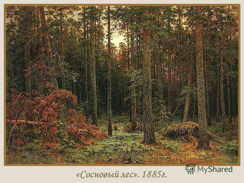 «Сосновый лес». 1885 г.