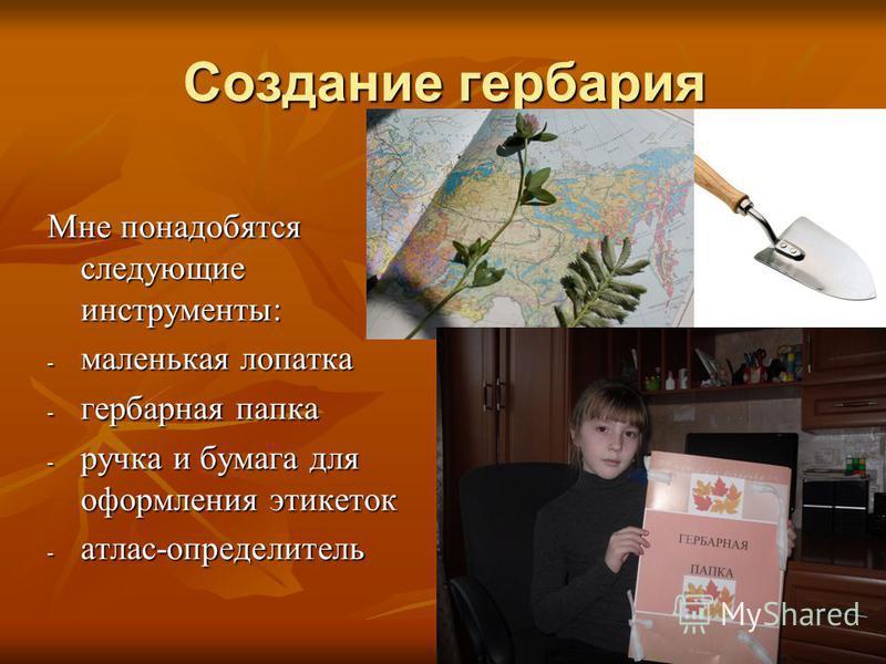 Создание гербария Мне понадобятся следующие инструменты: - маленькая лопатка - гербарная папка - ручка и бумага для оформления этикеток - атлас-определитель
