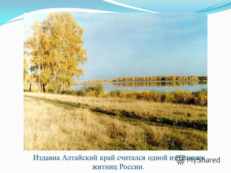 Издавна Алтайский край считался одной из главных житниц России.