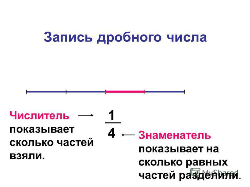 1 4 Запись дробного числа Знаменатель показывает на сколько равных частей разделили. Числитель показывает сколько частей взяли.