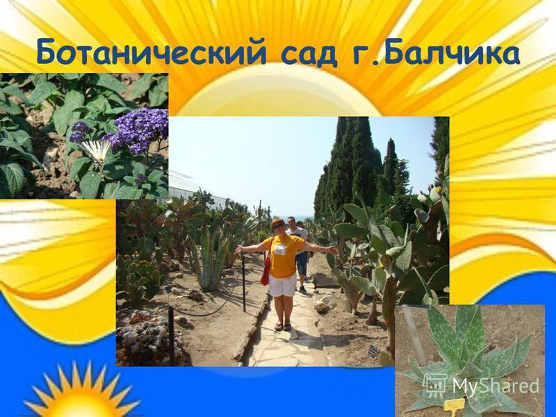 Ботанический сад г.Балчика