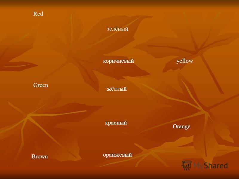 Red yellow Green Orange Brown красный коричневый зелёный жёлтый оранжевый