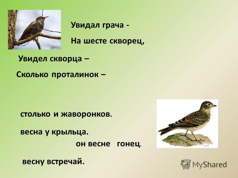Увидал грача - На шесте скворец, Увидел скворца – Сколько проталинок – весну встречай. он весне гонец. весна у крыльца. столько и жаворонков.
