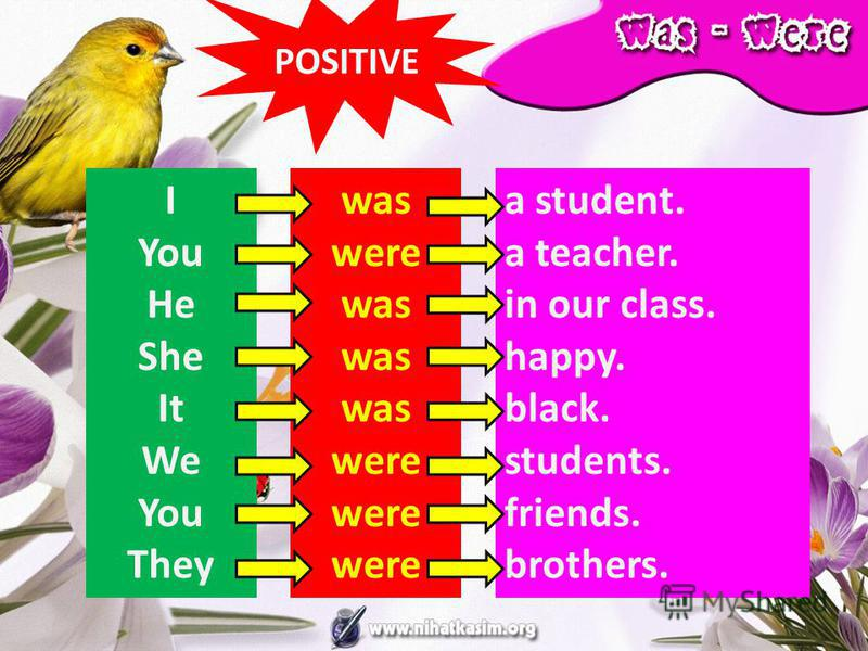 I You He She It We You They was were was were a student. a teacher. in our class. happy. black. students. friends. brothers. POSITIVE
