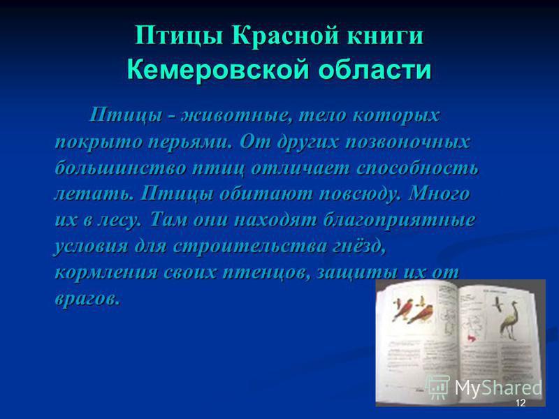 Птицы Красной книги Кемеровской области Птицы - животные, тело которых покрыто перьями. От других позвоночных большинство птиц отличает способность летать. Птицы обитают повсюду. Много их в лесу. Там они находят благоприятные условия для строительств