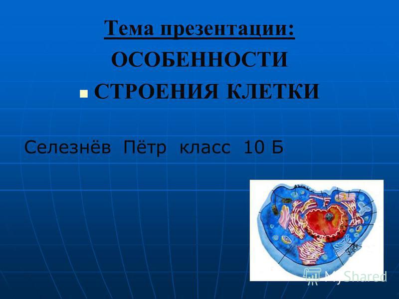 Тема презентации: ОСОБЕННОСТИ СТРОЕНИЯ КЛЕТКИ Селезнёв Пётр класс 10 Б