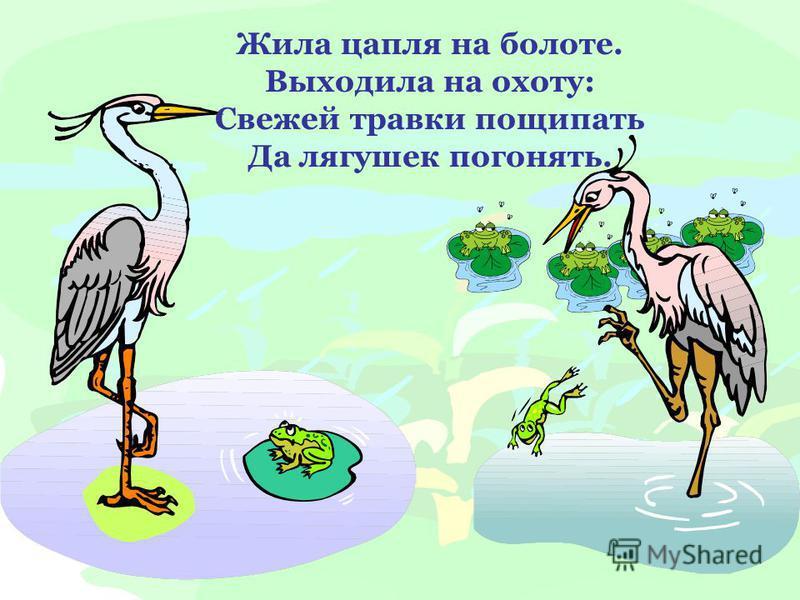 Жила цапля на болоте. Выходила на охоту: Свежей травки пощипать Да лягушек погонять.