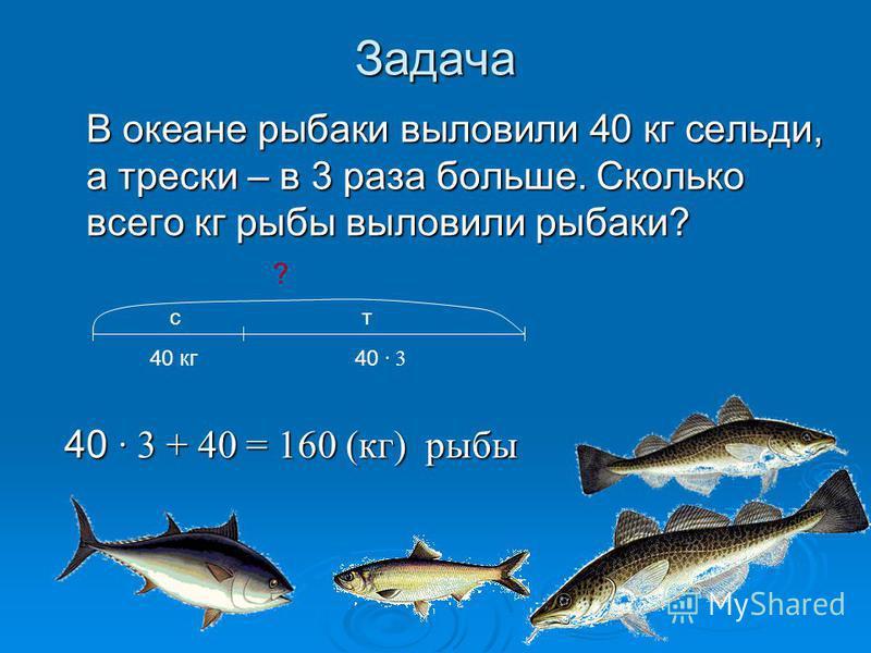 Задача В океане рыбаки выловили 40 кг сельди, а трески – в 3 раза больше. Сколько всего кг рыбы выловили рыбаки? В океане рыбаки выловили 40 кг сельди, а трески – в 3 раза больше. Сколько всего кг рыбы выловили рыбаки? 40 · 3 + 40 = 160 (кг) рыбы 40