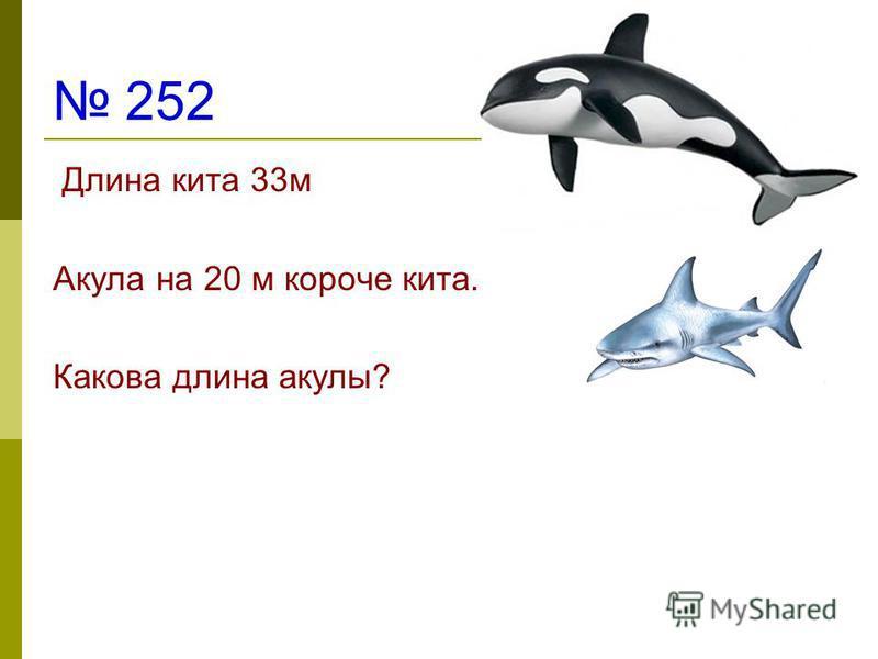 252 Длина кита 33 м Акула на 20 м короче кита. Какова длина акулы?