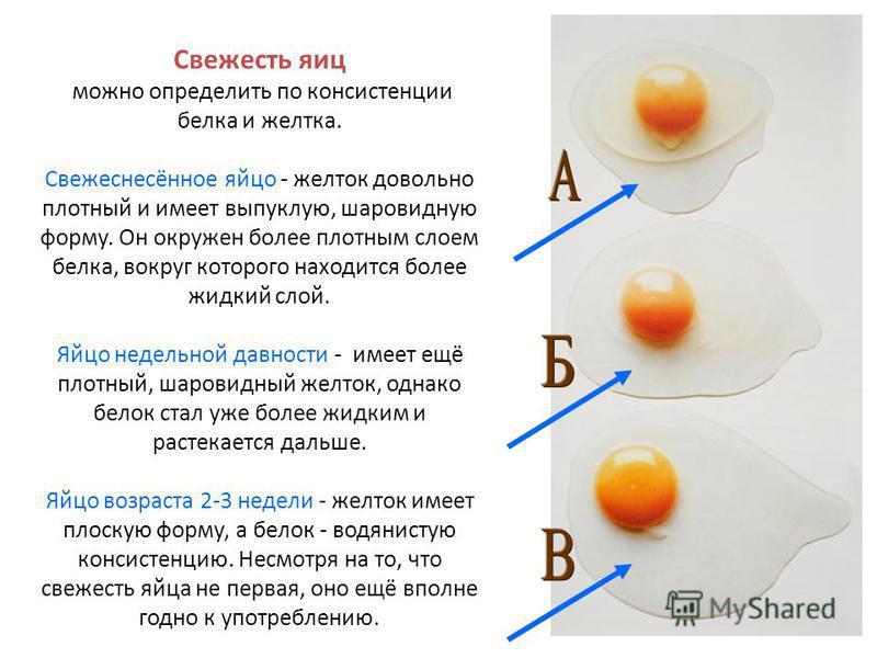 Свежесть яиц можно определить по консистенции белка и желтка. Свежеснесённое яйцо - желток довольно плотный и имеет выпуклую, шаровидную форму. Он окружен более плотным слоем белка, вокруг которого находится более жидкий слой. Яйцо недельной давности