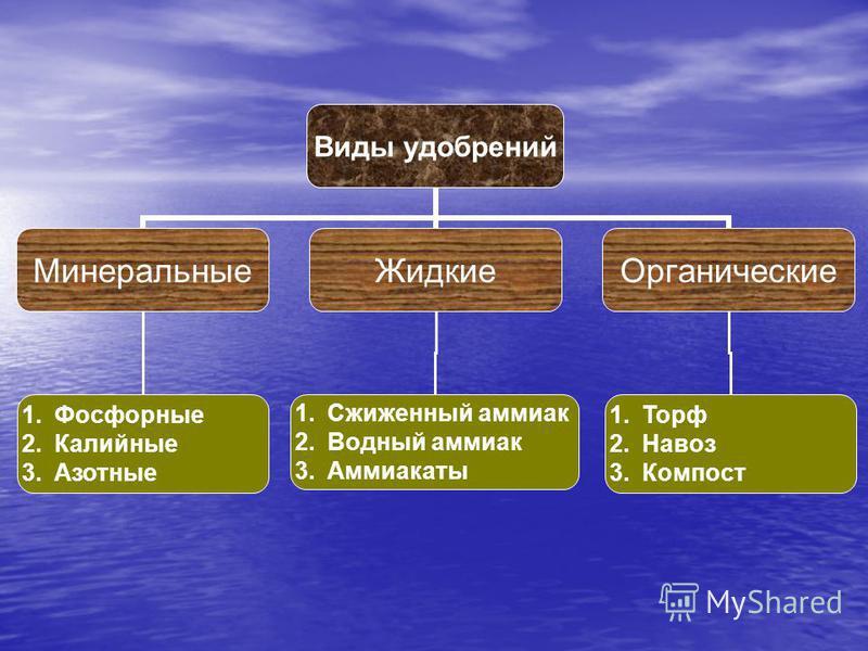 Виды удобрений Минеральные ЖидкиеОрганические 1. Фосфорные 2. Калийные 3. Азотные 1. Сжиженный аммиак 2. Водный аммиак 3. Аммиакаты 1. Торф 2. Навоз 3.Компост