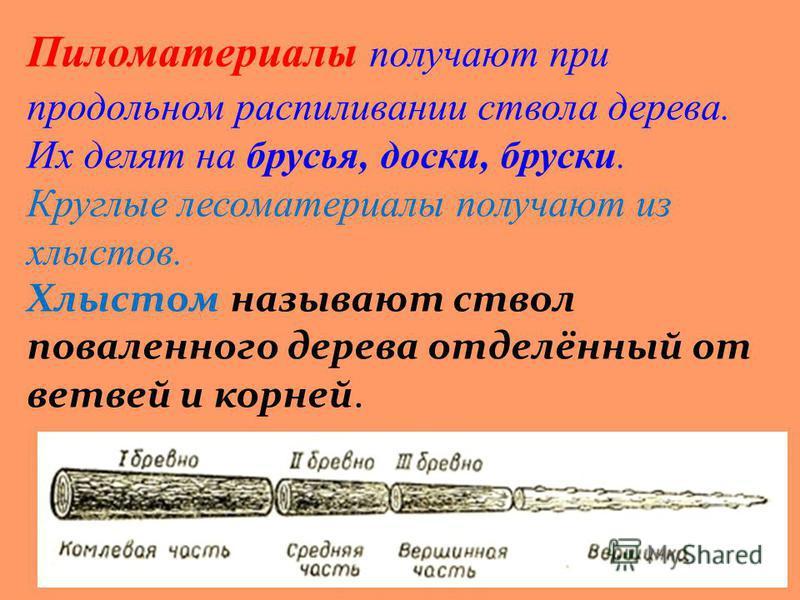 Пиломатериалы получают при продольном распиливании ствола дерева. Их делят на брусья, доски, бруски. Круглые лесоматериалы получают из хлыстов. Хлыстом называют ствол поваленного дерева отделённый от ветвей и корней.
