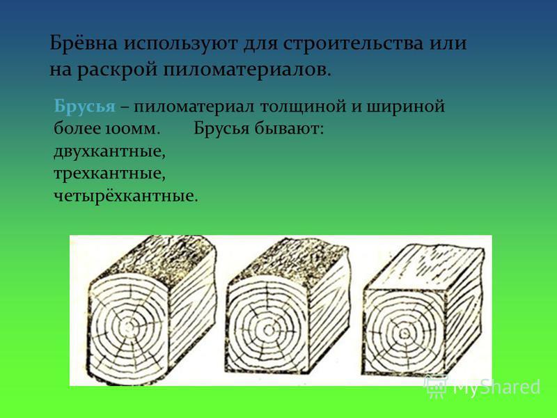 Брёвна используют для строительства или на раскрой пиломатериалов. Брусья – пиломатериал толщиной и шириной более 100 мм. Брусья бывают: двухкантные, трехкантные, четырёхкантные.
