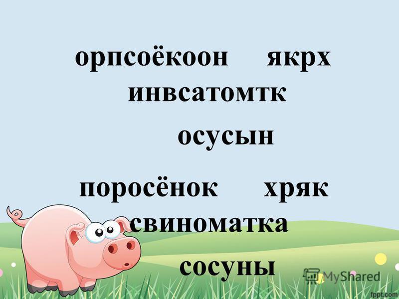 орпсоёкоон якрх инвсатомтк осусын поросёнок хряк свиноматка сосуны