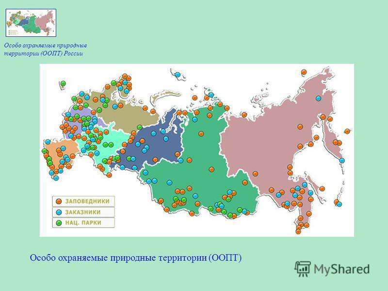 Особо охраняемые природные территории (ООПТ) Особо охраняемые природные территории (ООПТ) России